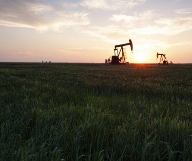 Prairie Oil Saskatchewan Canada