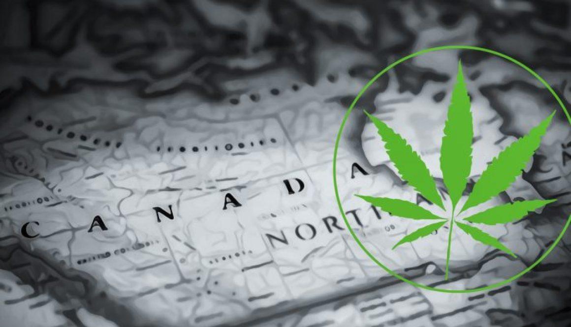Weed North